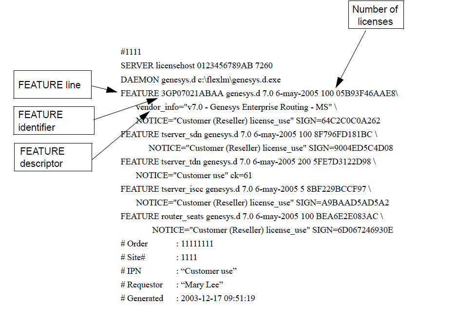 Sample License Data File Using the Feature Identifier and Descriptor