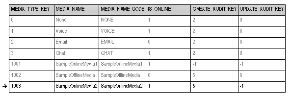 GIM MEDIA TYPE Table.png