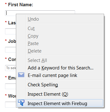 Co-browse Using Firebug 1.png