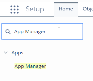 GPlus adp Lightning appmanager.png